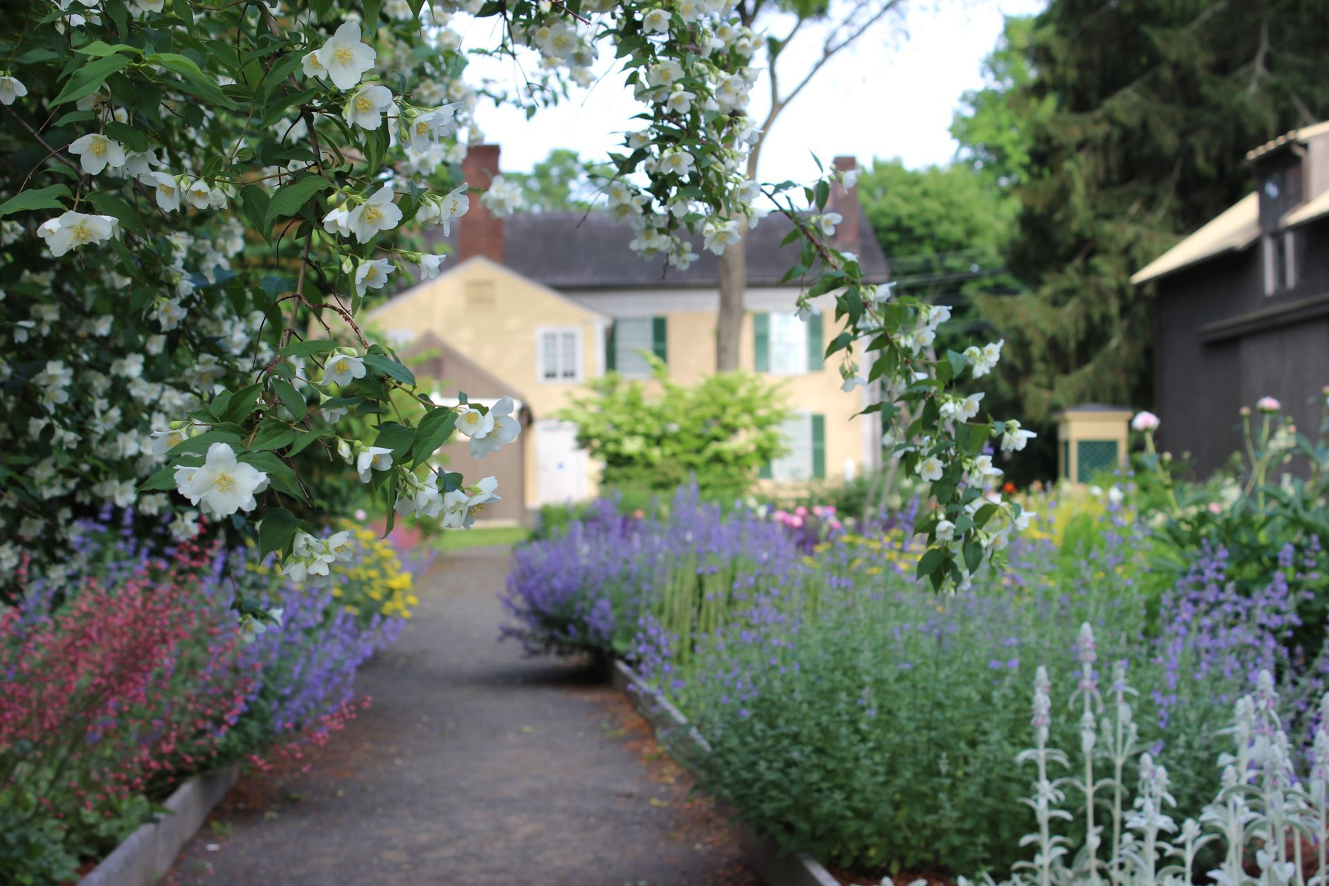Gardens at the Florence Griswold Museum